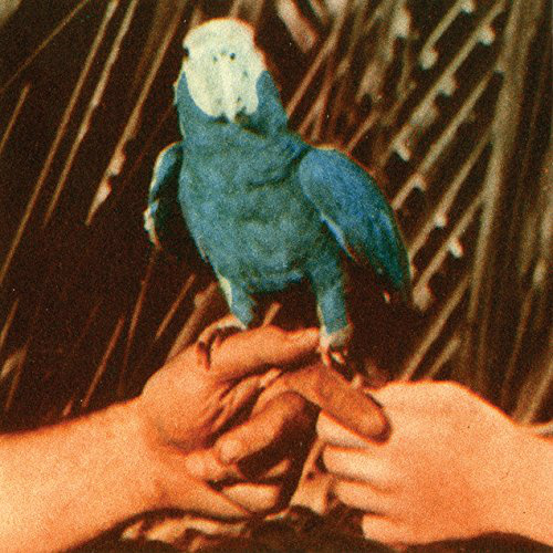 andrew-bird-are-you-serious-album-cover-art