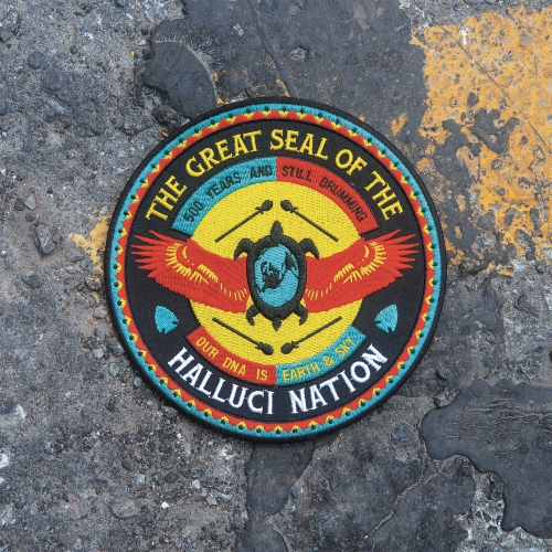we-are-the-halluci-nation