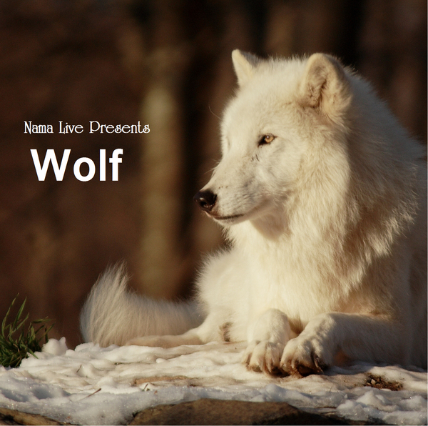 wolf-cd-cover